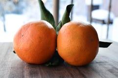Снег Tangerines яркий оранжевый Стоковое фото RF