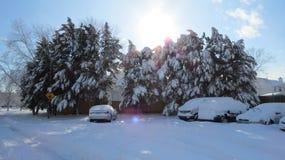 Снег Virginia Beach стоковые изображения rf