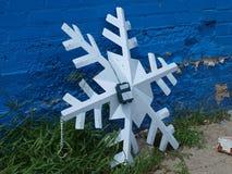 Снежинка в июне Стоковое Изображение RF