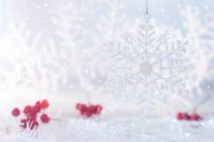 Снежинка и ягода зимы на красивой предпосылке рождества Новый Год предпосылки Стоковые Фото