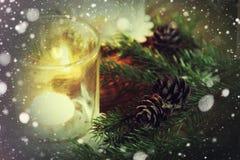 Снежинка конуса подсвечника ветви карточки ретро Стоковые Изображения RF