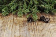Снежинка конуса предпосылки ветви карточки Стоковые Изображения