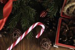 Снежинка конуса предпосылки ветви карточки Стоковое фото RF