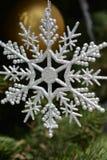 снежинка орнамента Стоковое Изображение RF