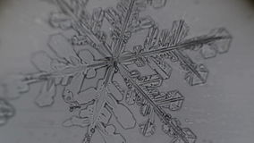 Снежинка плавит на свете - серой предпосылке сток-видео
