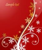 снежинка рождества предпосылки флористическая Стоковая Фотография