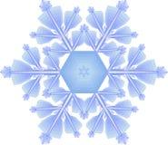 снежинка Стоковые Изображения RF