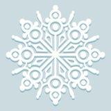 Снежинка Frost Стоковое Фото