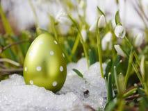 Snowdrop лужка пасхального яйца Стоковые Фото