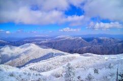 Снежинки горы Стоковая Фотография