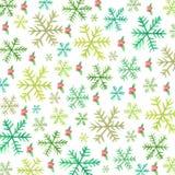 Снежинки и ягод-акварель падуба Стоковая Фотография
