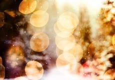 Снежинки против светов леса зимы и леса и bokeh зимы светов bokeh Стоковая Фотография RF