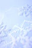 снежинки стоковые фото