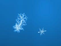 3 снежинки Стоковое фото RF