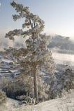 снежная зима вала Стоковые Фотографии RF