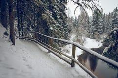 Снежная тропа рекой стоковая фотография rf