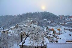 Снежное дерево в моем саде стоковая фотография rf