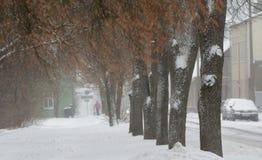 Снежности в городе, некоторые автомобили на улице и далеко один пешеход Стоковое Изображение RF