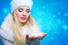 Снежности зимы Стоковое Фото