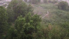 Снежности и проливной дождь летом В предпосылке зеленые деревья, трава, путь сток-видео
