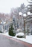 Снежности и уличные фонари Стоковое фото RF