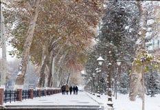 Снежности и уличные фонари Стоковая Фотография