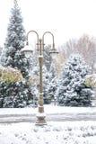 Снежности и уличные фонари Стоковые Фото