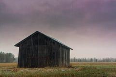 Снежности осени в сельской Финляндии Стоковые Изображения