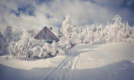 Снежности покрыли деревья и дома в горном селе стоковые фото