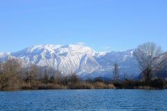 снежности утра monte guglielmo Стоковая Фотография