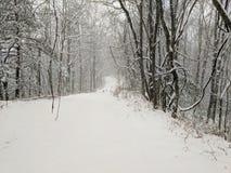 снежно стоковые изображения rf