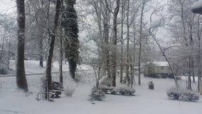снежно стоковая фотография rf