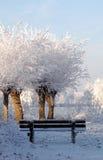 снежок ландшафта Голландии Стоковое Фото
