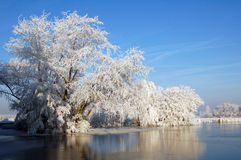 снежок ландшафта Голландии Стоковая Фотография