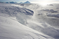 снежок вьюги Стоковые Изображения RF