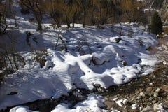 Снежок в горах Стоковое Изображение RF