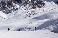Снежок в горах Стоковые Фото