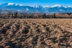 Снежок в горах Стоковая Фотография RF