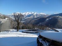 Снежок в горе Стоковые Фотографии RF