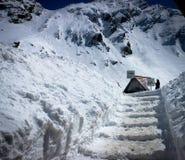Снежок в Эйприле Стоковые Фото