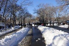 Снежок в Central Park Стоковая Фотография RF