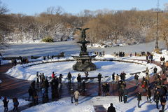Снежок в Central Park Стоковые Изображения