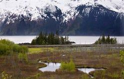 снежок горной цепи анкореджа Аляски Стоковая Фотография RF