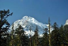 снежок горы Стоковое Изображение