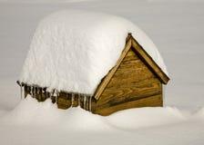 снежок дома собаки банка Стоковое Фото