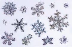снежок кристаллов предпосылки большой Стоковые Фотографии RF