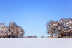 снежок ландшафта Стоковые Изображения RF