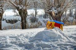 снежок ловкости стоковое изображение rf