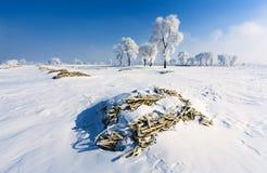 снежок места стоковые изображения