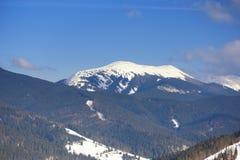 Снежок на верхней части горы Стоковые Изображения RF